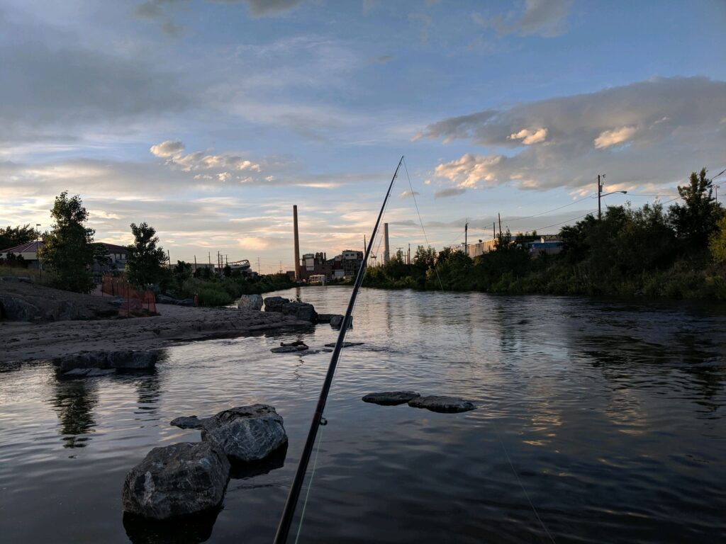 My Kind of Livable: Not having to leave town to wet a line on the S. Platte River in Denver.
