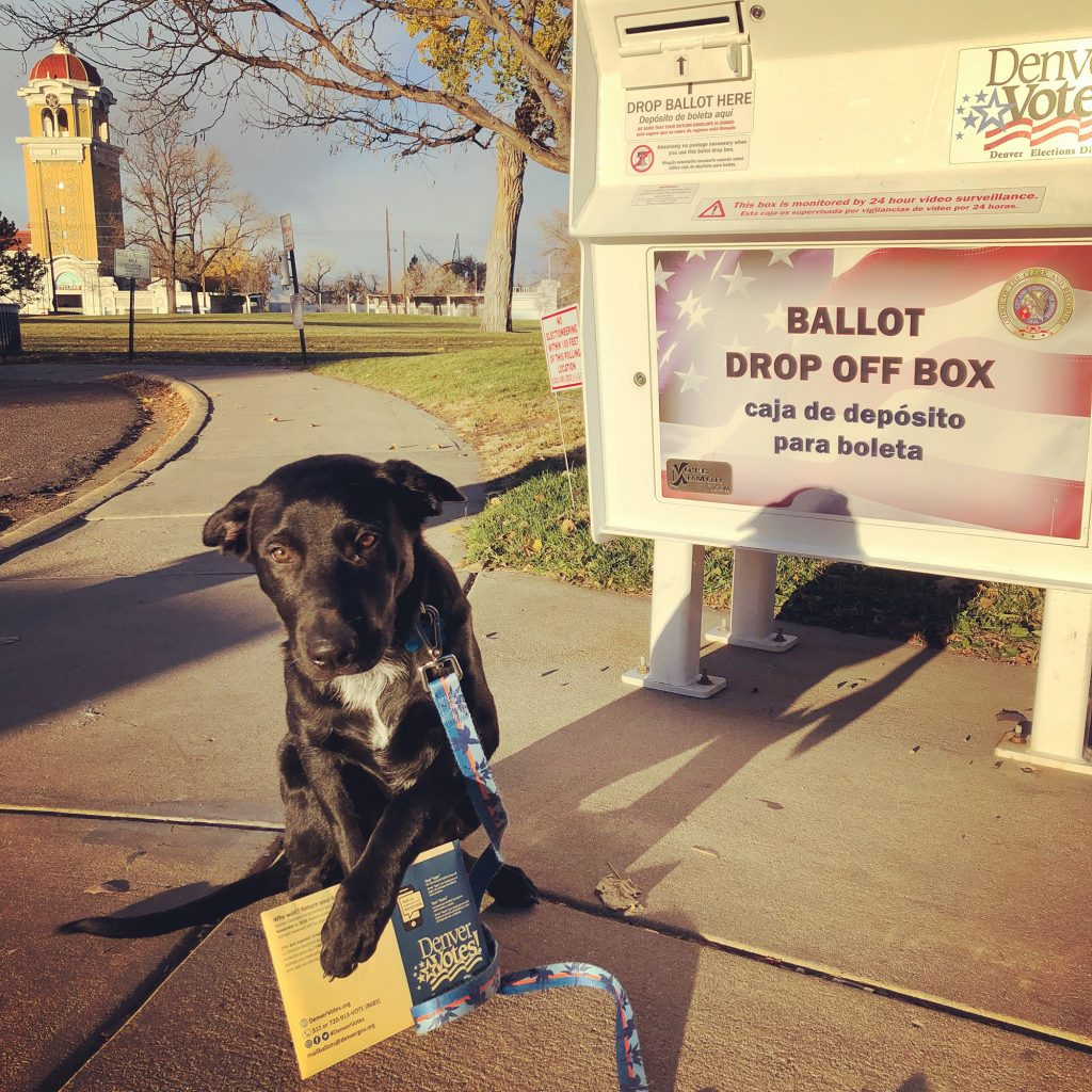 My Kind of Livable: A place that makes voting easy and accessible for all (including dogs). Denver mails ballots to all residents and places convenient drop-off locations throughout the city to make civic duty-ing easy.